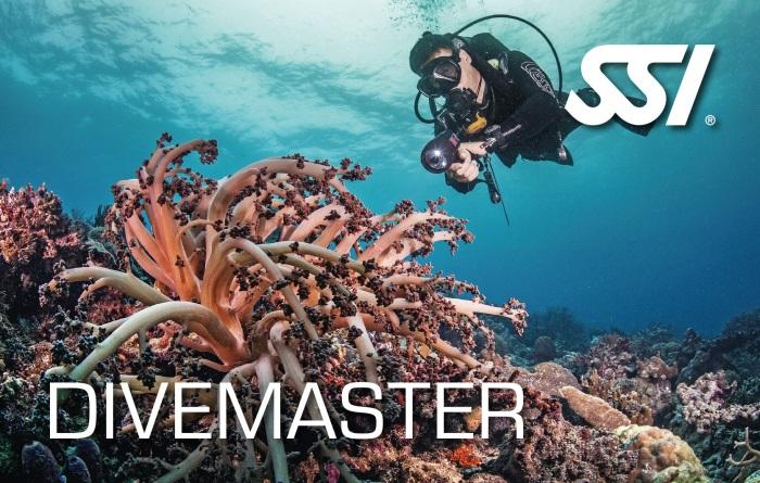 SSI Divemaster Kurs