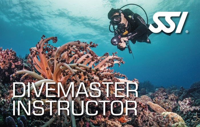 Divemaster Instructor Kurs in München