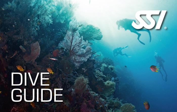 SSI Dive Guide Tauchkurs