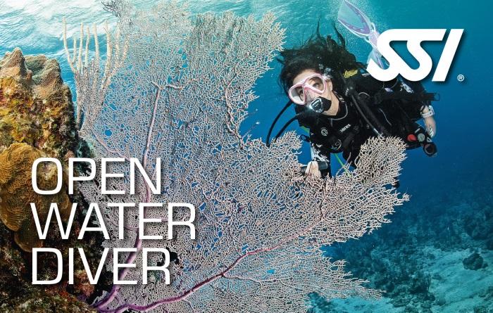 Open Water Diver Kurs München